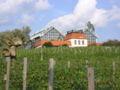 ZG-Palmiarnia Zielonogórska.JPG
