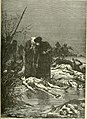 Zigzag journeys in Europe - vacation rambles in historic lands (1880) (14598495248).jpg