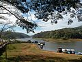 """""""Gateway of Perrier forest in Kerala, India .jpg"""".jpg"""