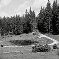 """""""Luža"""" v meji oziroma na pašniku (na poti Vojsko - Rovtarjev vrh) 1959.jpg"""