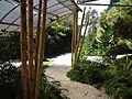 (Jardín Botánico de Quito) pic a3.JPG