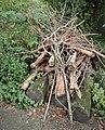 Ökologisch wertvoller Holz- und Reisighaufen.jpg