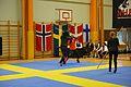 Örebro Open 2015 157.jpg