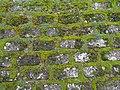 Град Скопје, Р.Македонија нас. Карпош IV опш. Карпош 4 - panoramio (10).jpg