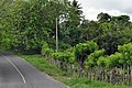 Доминиканская Республика - panoramio (52).jpg