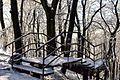 Зимові сходи у парку.JPG