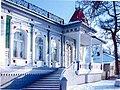Картинная галерея им. Петра Шолохова в Борисоглебске.jpg