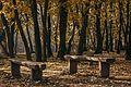 Кошутњак, јесен.jpg