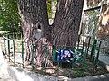 ПП Чорноглазівська (нині Бажанова 5) зіпсована охоронна таблиця.jpg