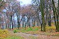 Парк у Микулинцях.jpg