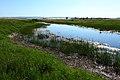 Протока речки Бурлы. Вид в юго-западном направлении - panoramio.jpg