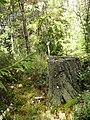 Фото путешествия по Беларуси 594.jpg