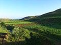 طبیعت اطراف پل تاریخی قلعه حاتم.jpg