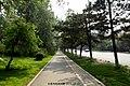 南湖大路 Nanhu Dalu - panoramio.jpg