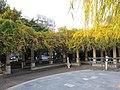 城中公园风光 - panoramio.jpg