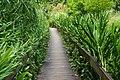 大舌滿溪生態步道 Tansibuan Creek Eco Trail - panoramio.jpg