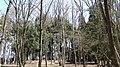 宇都宮市飛山城史跡公園 - panoramio (5).jpg