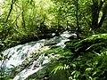 得子口溪 Dezikou Creek - panoramio.jpg