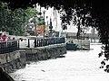 淡水榕堤 Damshi Banyan Bank - panoramio.jpg