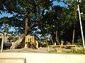 0001jfEast West Bajac-bajac Park Tapinac Olongapo City Zambalesfvf 20.JPG