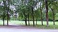 07.06.2010. München - panoramio (17).jpg