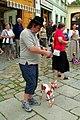 1.9.16 1 Pisek Puppet Parade 13 (29376056386).jpg