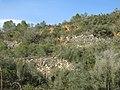 118 Marges de pedra seca a Vespella de Gaià, vora el camí de Salomó.jpg