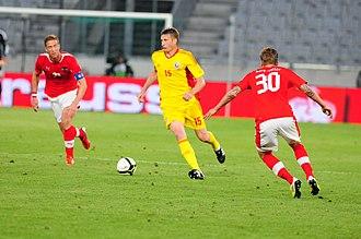 Dorin Goian - Goian in action against Austria on 5 June 2012