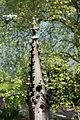 15-06-07-Schweriner-Schloß-RalfR-n3s 7748.jpg