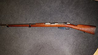 Mauser Model 1889 Type of Rifle