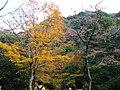1 Minookōen, Minoo-shi, Ōsaka-fu 562-0002, Japan - panoramio (26).jpg