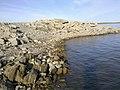 2011年8月13日阿苇滩水库白石头钓鱼点,涨水时的鱼窝 余华峰 - panoramio.jpg