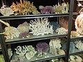 2012 Tucson Gem & Mineral Show 102.JPG