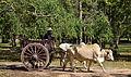 201312181113a (Hartmann Linge) Sukhothai Si Chum.jpg