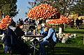 2014 Kürbisfestival - Jucker Farm (Juckerhof) 2014-10-31 15-03-02.JPG