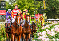 2014 Super Saturday at Flemington (13005679204).jpg