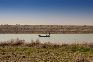 Euphrates - A fishing boat in the Euphrates Southern Iraq