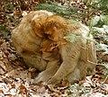 2016-04-21 15-09-21 montagne-des-singes.jpg