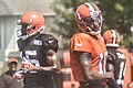 2016 Cleveland Browns Training Camp (28076235233).jpg