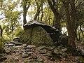 20180603 - Dolmen de la Siureda 14.jpg