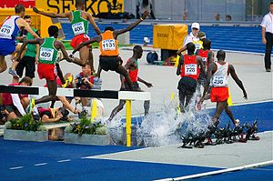 3000 metres steeplechase - Image: 3000 steeple final Berlin 2009