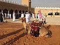 34- Al-Qassim Region (My Trip To Al-Jenadriyah 32).jpg