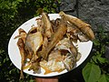 3412Fried fish in the Philippines 35.jpg