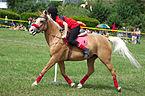 4ème manche du championnat suisse de Pony games 2013 - 25082013 - Laconnex 47.jpg