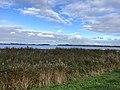 6779.Haansvaart.Schildmeer.Natuurgebied.Vossenbult.Heerenhuisweg.Sans.Souci.Steendam.jpg