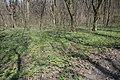 71-257-5005 Ploskovo-Zujevo DSC 5170.jpg