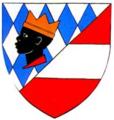 AUT Neuhofen an der Ybbs COA.png