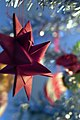 A froebel star.jpg