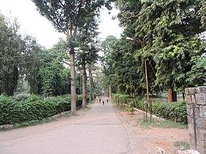 Roshanara Bagh - A view of Roshanara Garden