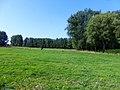 Aalst Onegem graslanden en bosjes - 228052 - onroerenderfgoed.jpg